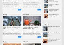 DotMag WordPress Theme Review - MyThemeShop